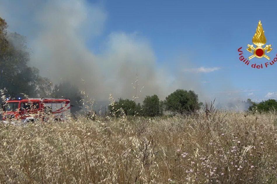 Paura a Molentargius, vasto incendio vicino alle case