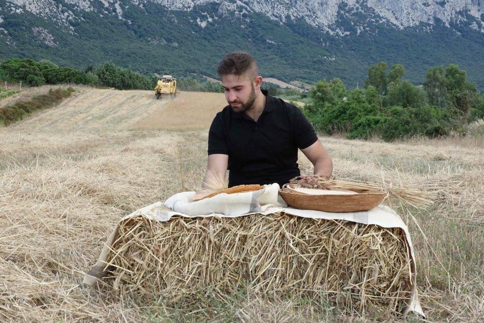Oliena, dalla mietitura al pane d'orzo: la scommessa dello chef
