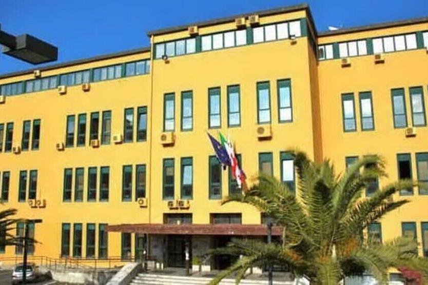 Impiegati e project manager, selezioni in due Comuni sardi e all'Università di Cagliari