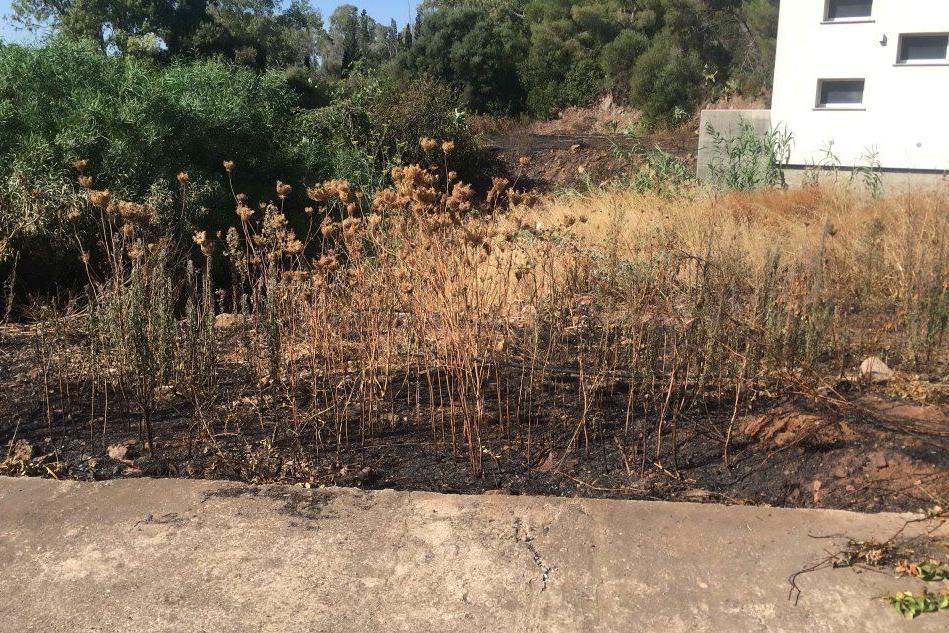 Incendio nella pineta di Rosmarino a Carbonia
