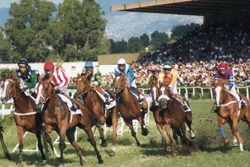 Galoppo, le corse in Sardegna ripartiranno il 3 giugno all'ippodromo di Chilivani