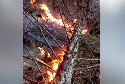 Il maestrale alimenta incendi nel nord Ogliastra