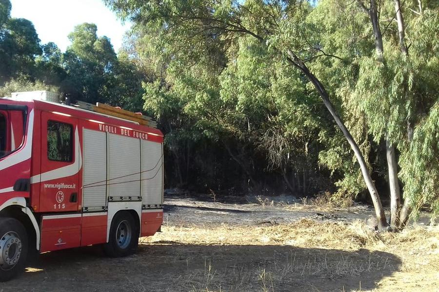 Perdaxius, fiamme vicino al parco di San Leonardo