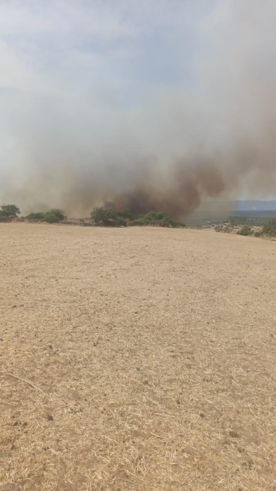 Un'altra immagine degli incendi (foto Orbana)