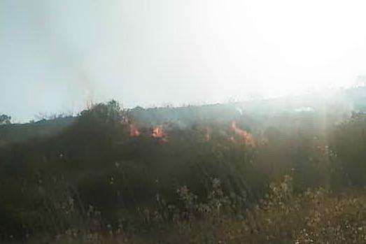 Gonnosnò, fiamme nelle campagne: in fumo stoppie e macchia mediterranea