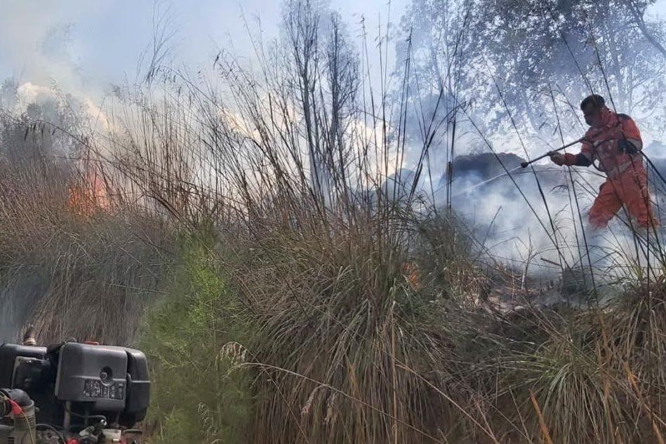 Segariu, ancora un incendio nella pineta