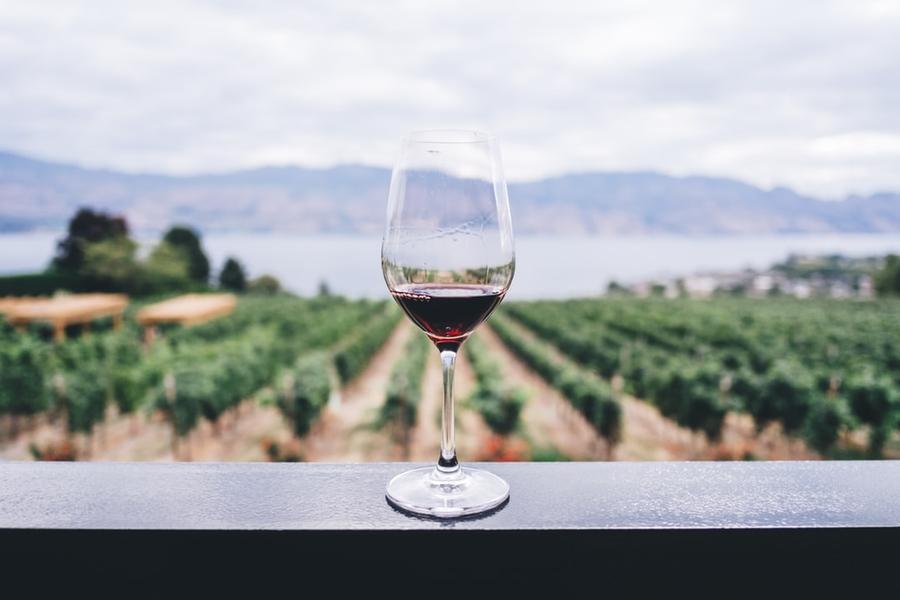 Dal ministero dell'Agricoltura 10 milioni perper lo stoccaggio di vini Docg, Doc eIgt