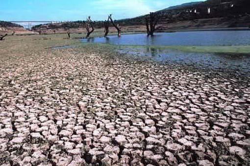 """Siccità, Copagri: """"Al più presto indennizzi per gli agricoltori"""""""