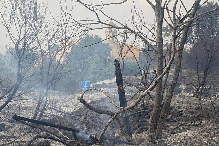 I danni degli incendi (Archivio L'Unione Sarda)