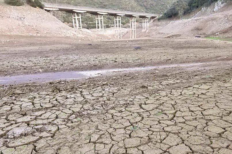"""Coldiretti, ancora """"nelle casse sbagliate"""" i 45 milioni di indennizzi per la siccità"""