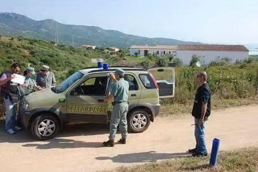 Un anno di grande lavoro per la Guardia forestale nella zona di Gutturu Mannu