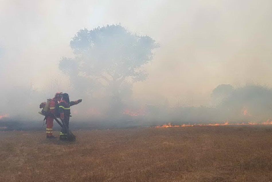 Le fiamme (foto Corpo forestale)
