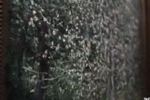 """""""Impressionisti segreti"""", sul grande schermo l'anteprima del docu-film"""