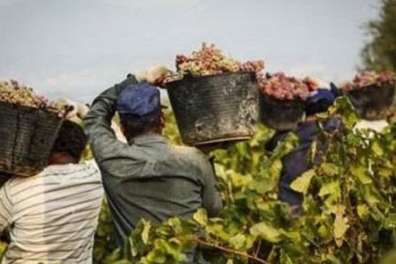 Migranti, Sardegna da record: tre extracomunitari su quattro lavorano