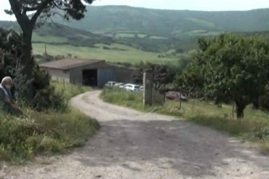 Giallo a Genoni, allevatore 36enne ucciso in un ovile