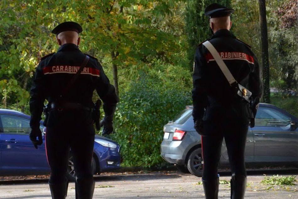 Disavventura per un carabiniere a Quartu: aggredito da un cane durante un controllo