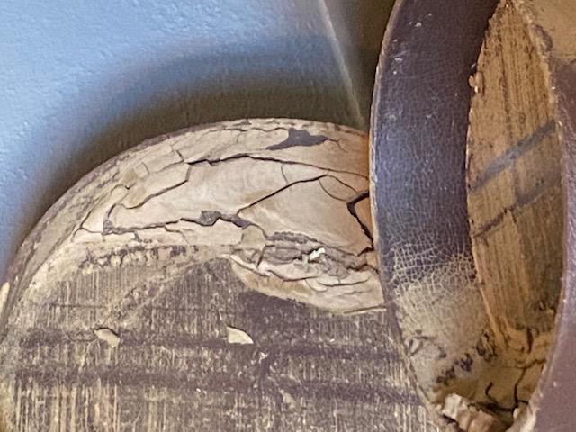 Oggetti incrostati di limo (foto Raggio)