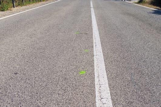 Sassari, incidente al motoraduno: Mereu è morto per un trauma addominale