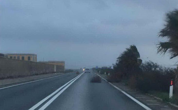 Strada 195 direzione Pula-Cagliari (foto Manca)