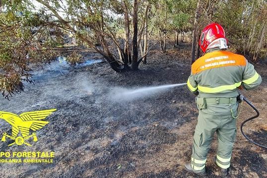 In Sardegna 13 incendi, fiamme alte a Carloforte e Nurri