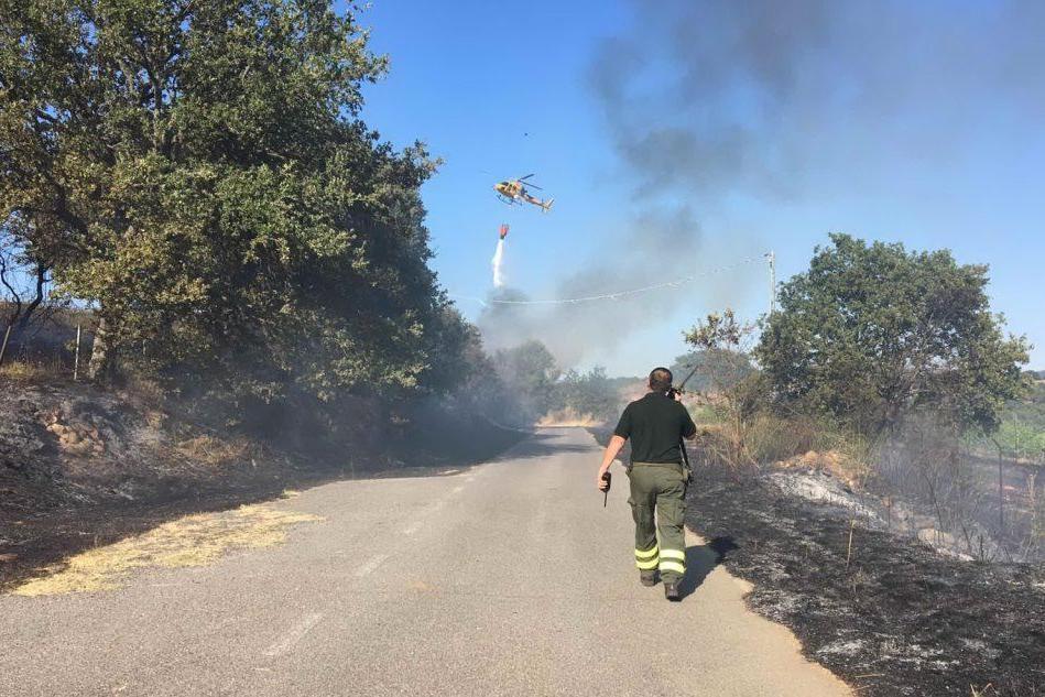 Mamoiada, lotta contro le fiamme lungo la Provinciale