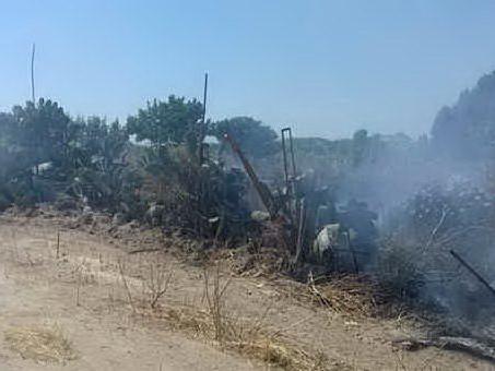 Fumi tossici a Molentargius: l'emergenza è stata affrontata nel modo migliore?
