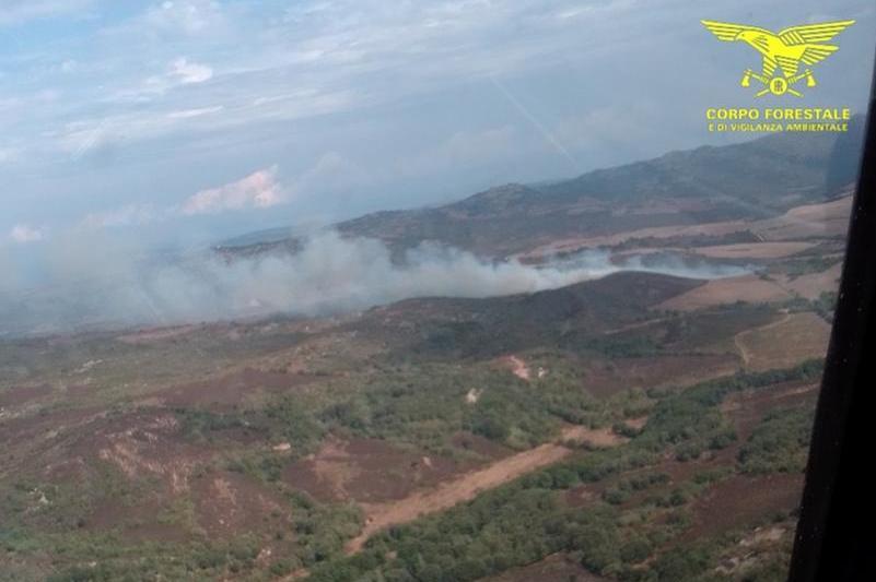 Dieci incendi nell'Isola: canadair ed elicotteri in azione