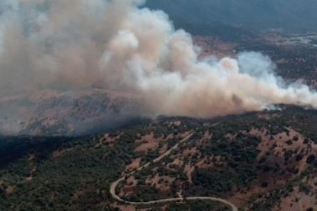 Fiamme a Ozieri e Olzai: 7 ettari di vegetazione in fumo