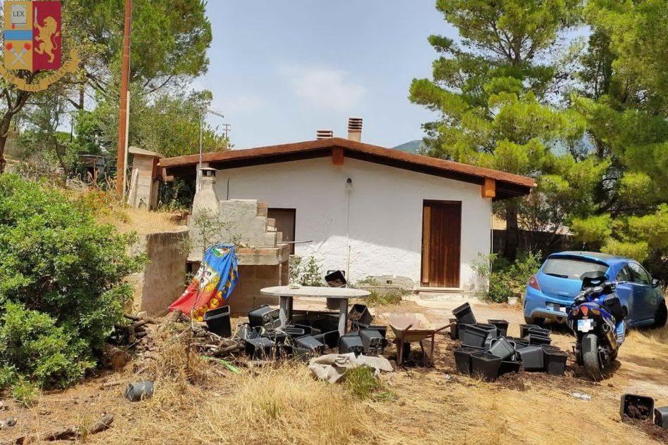 Sinnai, una serra di marijuana nella casa rurale: tre persone nei guai