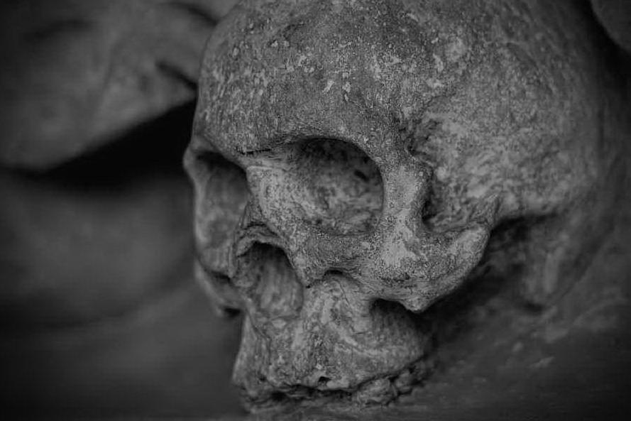 Tombe clandestine, nello Stato di Jalisco trovati i resti di 34 persone