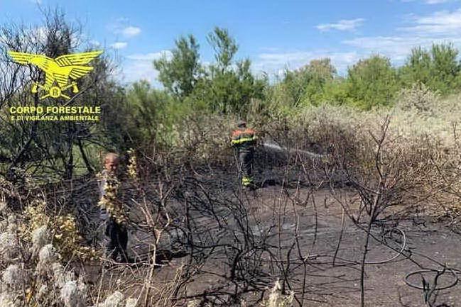 Forestas licenzia il dipendente arrestato per gli incendi