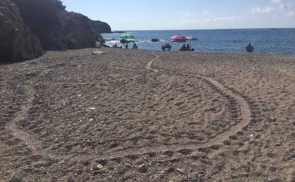 Le tracce sulla spiaggia (foto Murgana)
