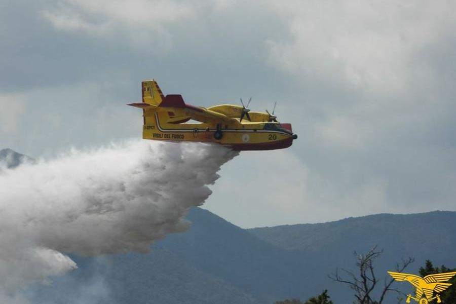 Dodici incendi nell'Isola, in fiamme un eucalipteto a Pabillonis