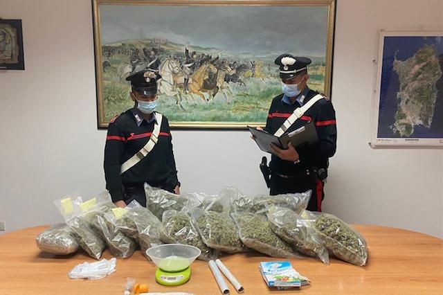 Nella casa di campagna 6 kg di marijuana: Olbia,27enne ai domiciliari