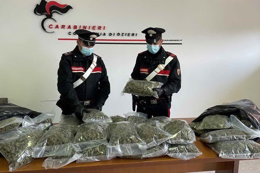 La droga posta sotto sequestro (foto carabinieri di Ozieri)