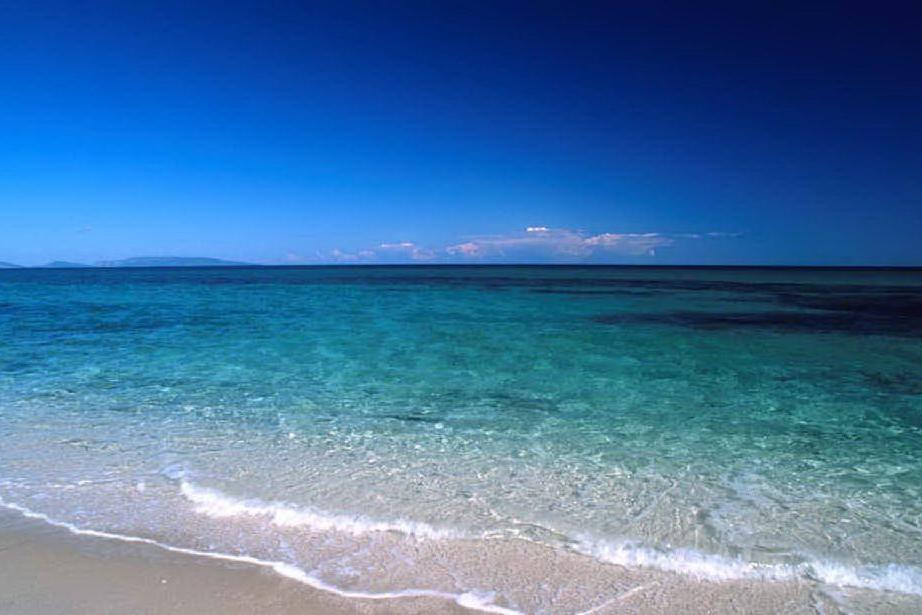 Da domani anche Sassari avrà una spiaggia per cani: Fiume Santo