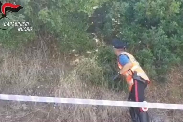 Nureci, tenta di appiccare un incendio: pensionato arrestato in flagranza