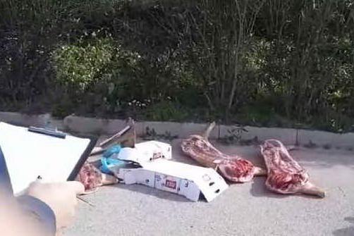 Carne gettata per strada a Porto Torres