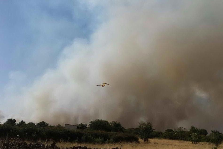 L'incendio nell'Oristanese (foto di Alessandra Chergia