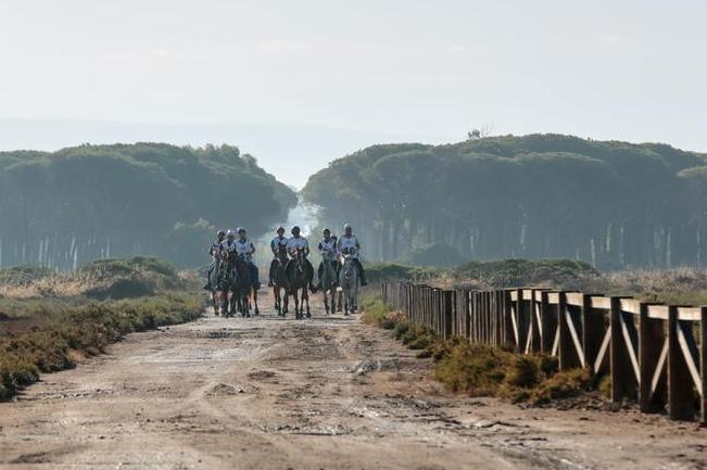 La Sardegna, i cavalli e gli affari con gli sceicchi