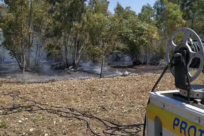 Pomeriggio di incendi a San Gavino: in fiamme eucaliptus e sterpaglie