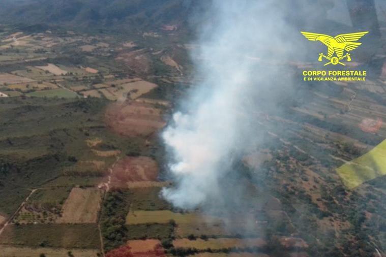 L'incendio a Triei (foto Corpo forestale)