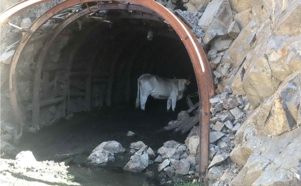 L'imbocco di una delle gallerie di Aritzo (L'Unione Sarda)