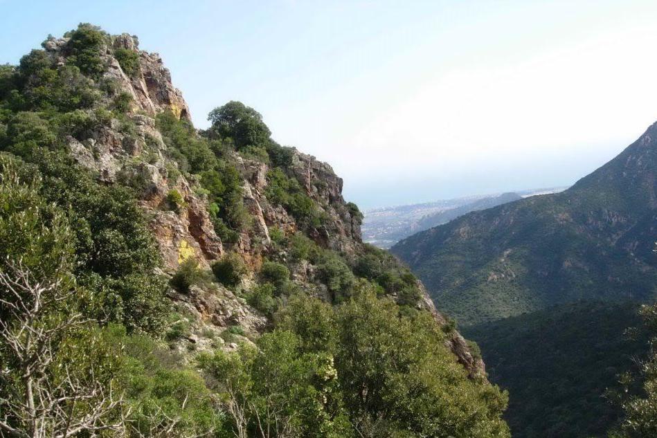 """""""Rivedere i confini del parco di Gutturu Mannu"""", interrogazione urgente a Pigliaru"""