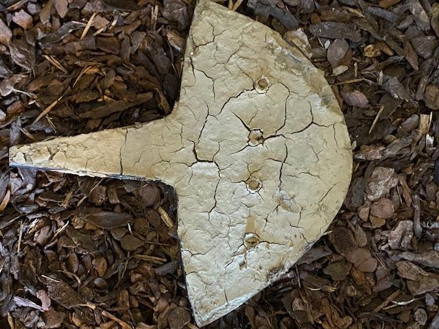 Una navicella coperta di fango (foto Raggio)