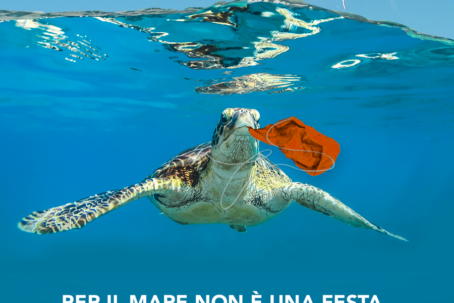 Il manifesto della petizione di Plastic free e Mare vivo