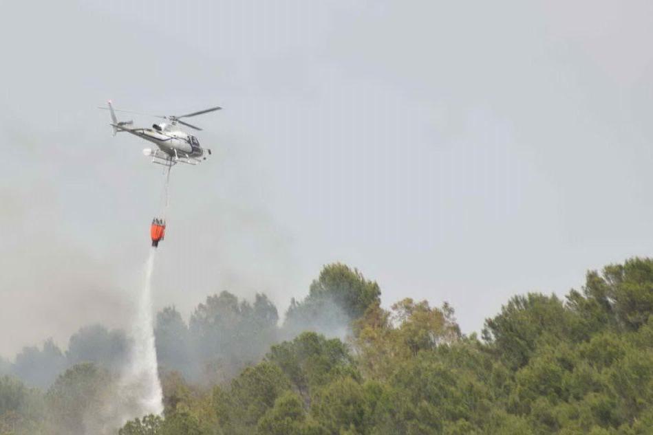 Segariu, incendio in pineta: sei ettari in fumo VIDEO