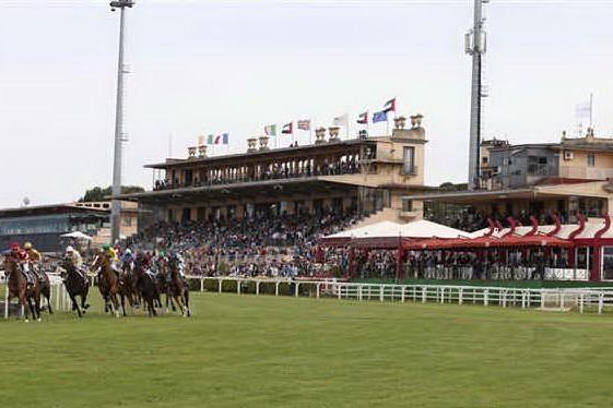 Ippica, cavalli arabi sardi protagonisti alle Capannelle