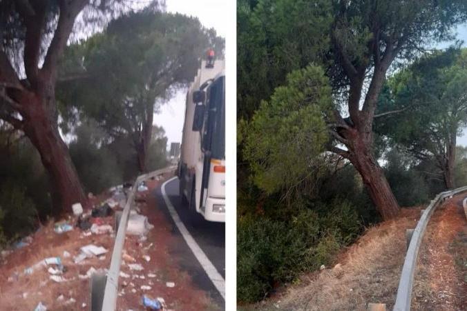 La Statale 130 ripulita da 43 tonnellate di rifiuti: le foto prima e dopo