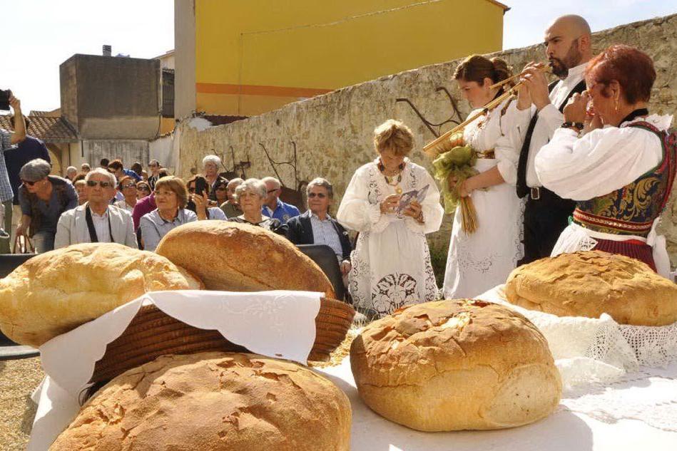 A Sanluri apre il Museo del pane: protagonista la storia del paese